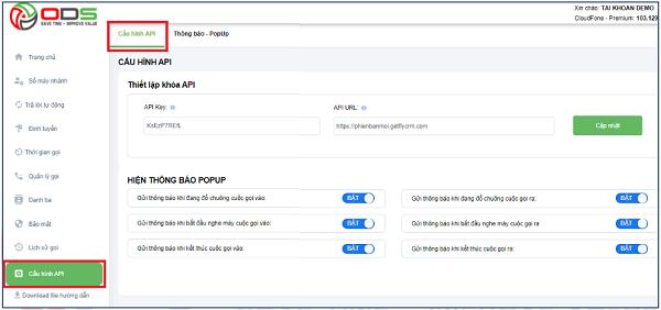 Giao diện cấu hình API